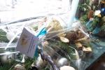 Świąteczne prace - miniatura