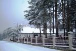 Zima  wokół naszego Domu - miniatura